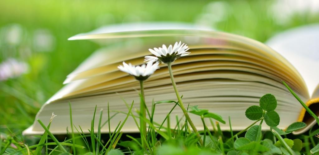 多読をスムーズに始めるための4つのヒント
