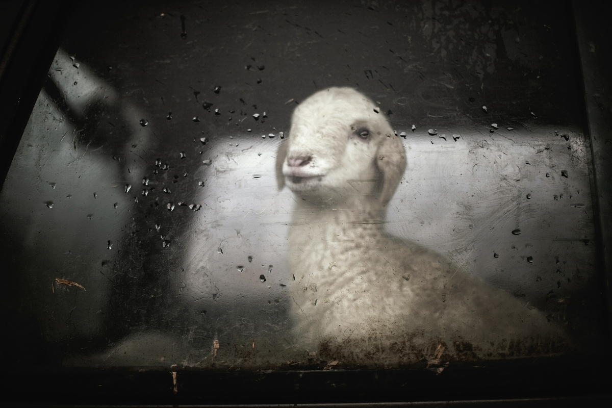 ジメジメ梅雨の季節。浮かない気持ちをブツクサつぶやく英語表現17