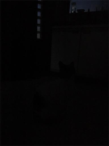 f:id:movingchest:20170422192222j:image