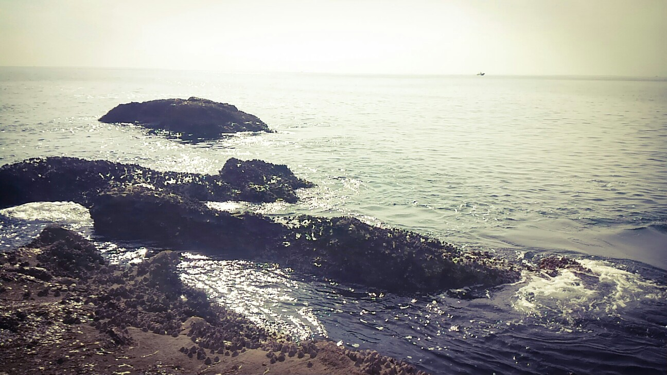 f:id:mow_tabetadsho:20170302194056j:plain