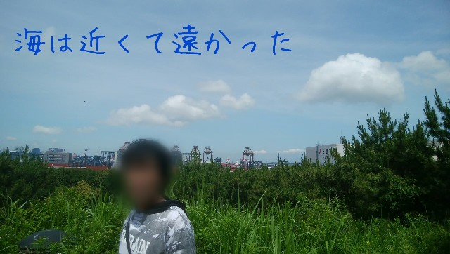 f:id:moyadoka:20200725142720j:image
