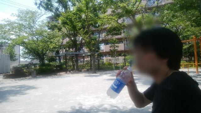 f:id:moyadoka:20200802161157j:image