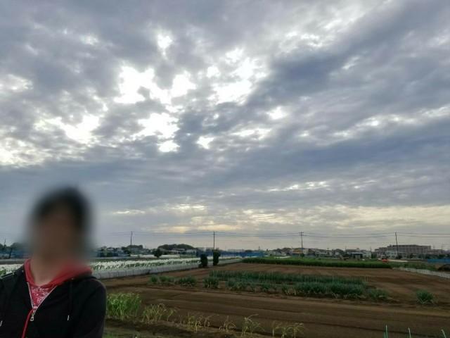 f:id:moyadoka:20200918003602j:image