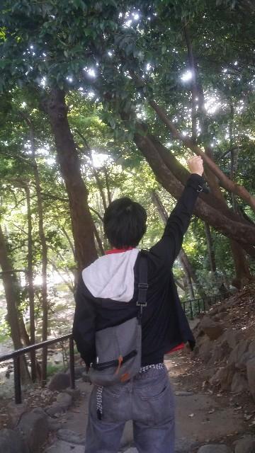 f:id:moyadoka:20201206155736j:image