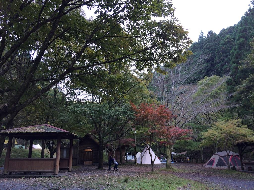 f:id:moyashi_takada:20161106215556j:image