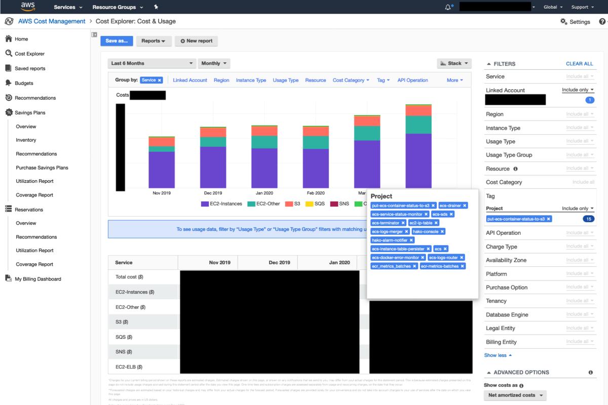 Cost Explorer によるカテゴリにかかるコストの可視化例