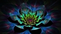 Lotus Fractal