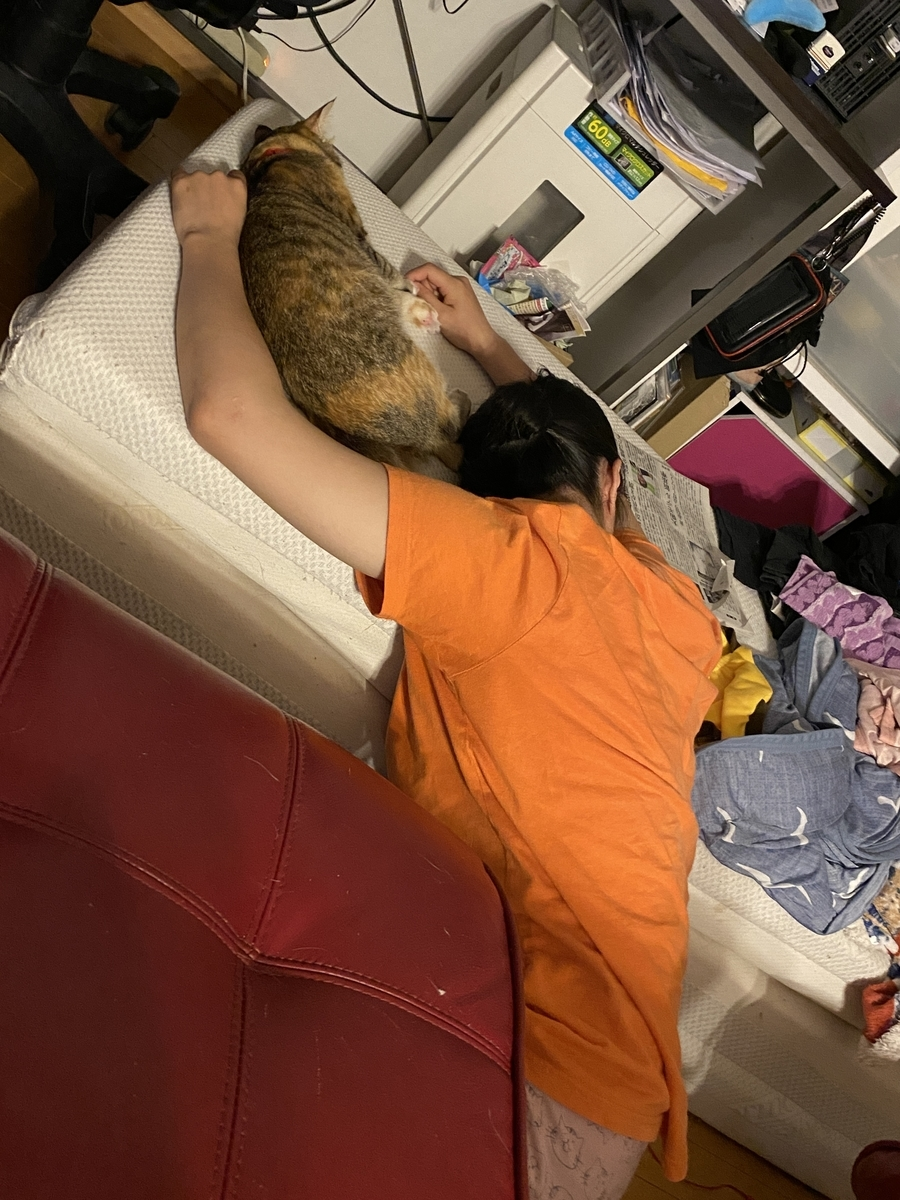 虎春と寝てるYちゃん