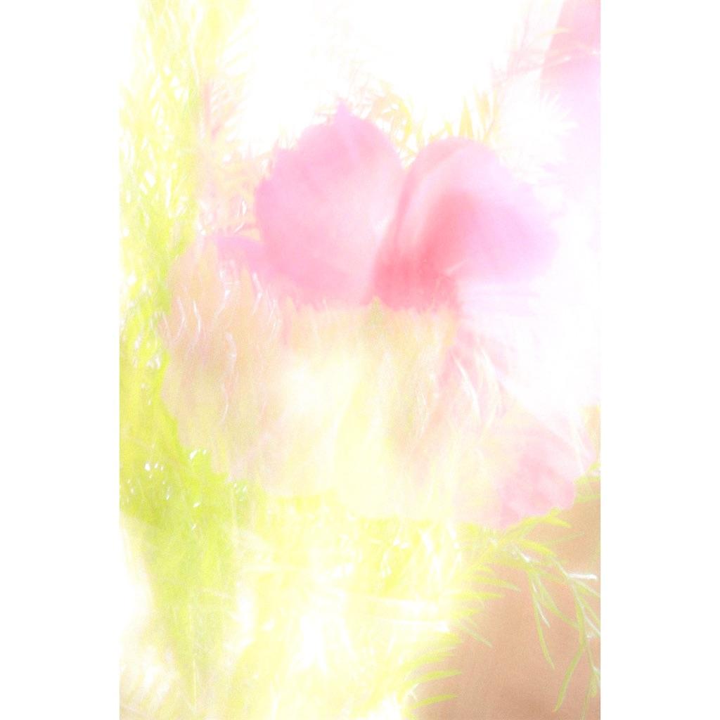 f:id:mrD:20201023205806j:image