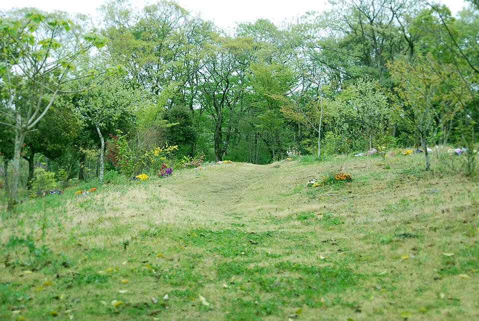 真光寺「里山の樹木葬」の写真