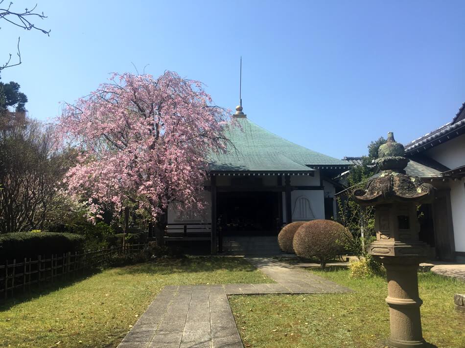 納骨堂「涅槃堂」の写真
