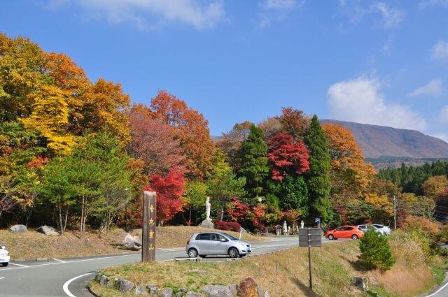 秋の金剛宝寺の写真