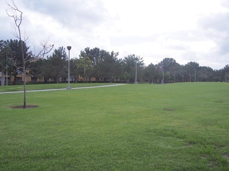 アーバインの芝生が広がる公園