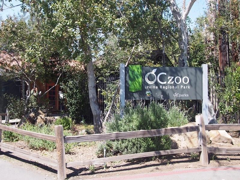 OC ZOOの入り口