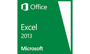 Office Excel 2013