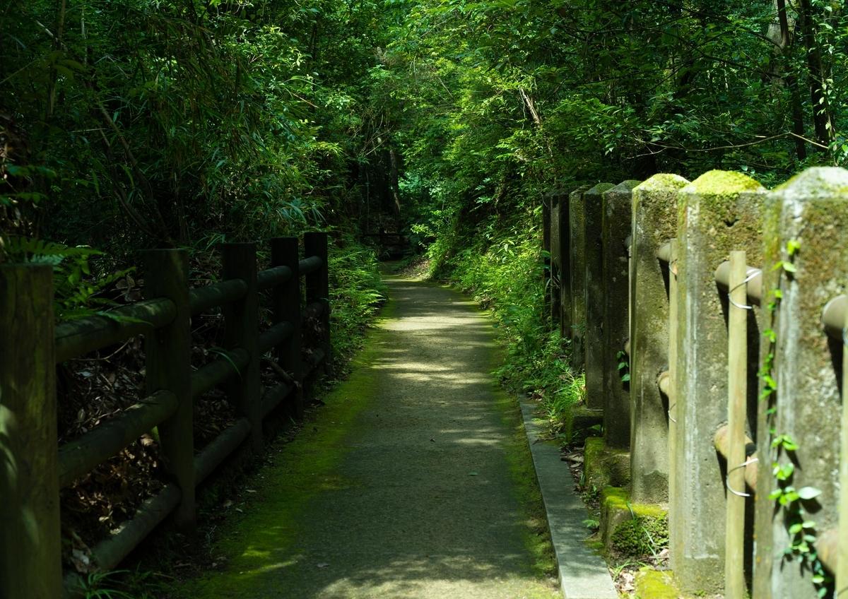 関之尾の滝の一本道