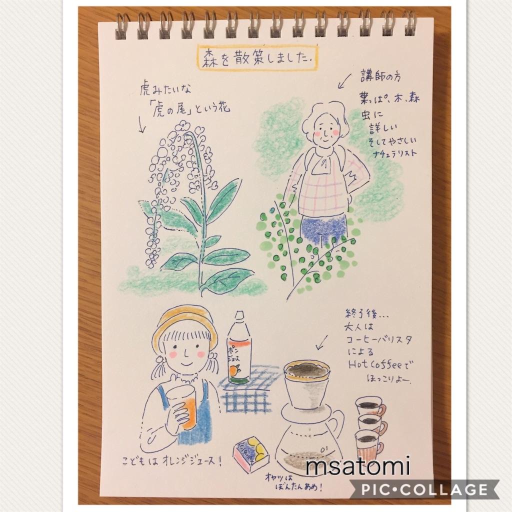 f:id:msatomi304:20180619220217j:image