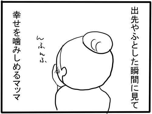 f:id:mskprpr:20170422004356j:plain