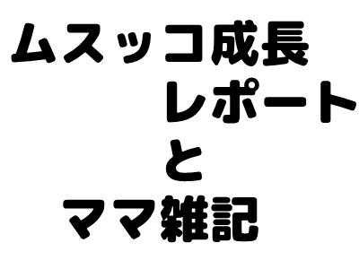 f:id:mskprpr:20170618211257j:plain