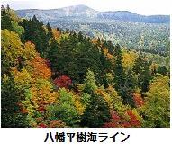f:id:msystem:20110928112640j:image:right