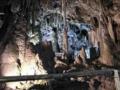 安家洞宮殿