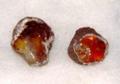三内丸山遺跡「琥珀原石」