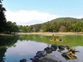 毛越寺「大泉が池」