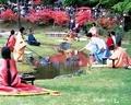 毛越寺「曲水の宴」