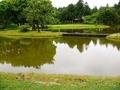 無量光院跡「舞鶴が池」