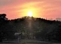 金鶏山に沈む夕日