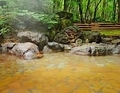 アクティブリゾーツ 岩手八幡平「露天風呂」
