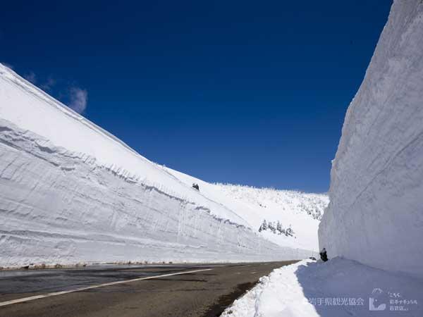 八幡平アスピーテライン「雪の回廊」