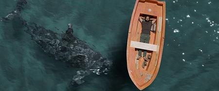 シャチの見える灯台、シャチと戯れるベト