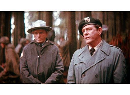 トラウトマン『大佐』の大佐ってどのくらい偉いのか
