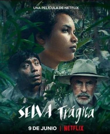 密林で展開されるインディース映画…Netflix映画悲哀の密林(感想)