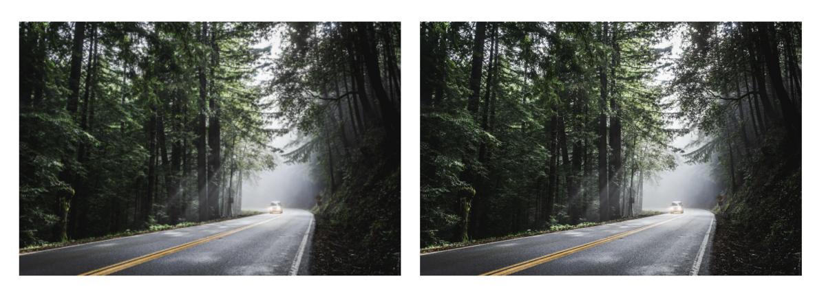 林道画像比較