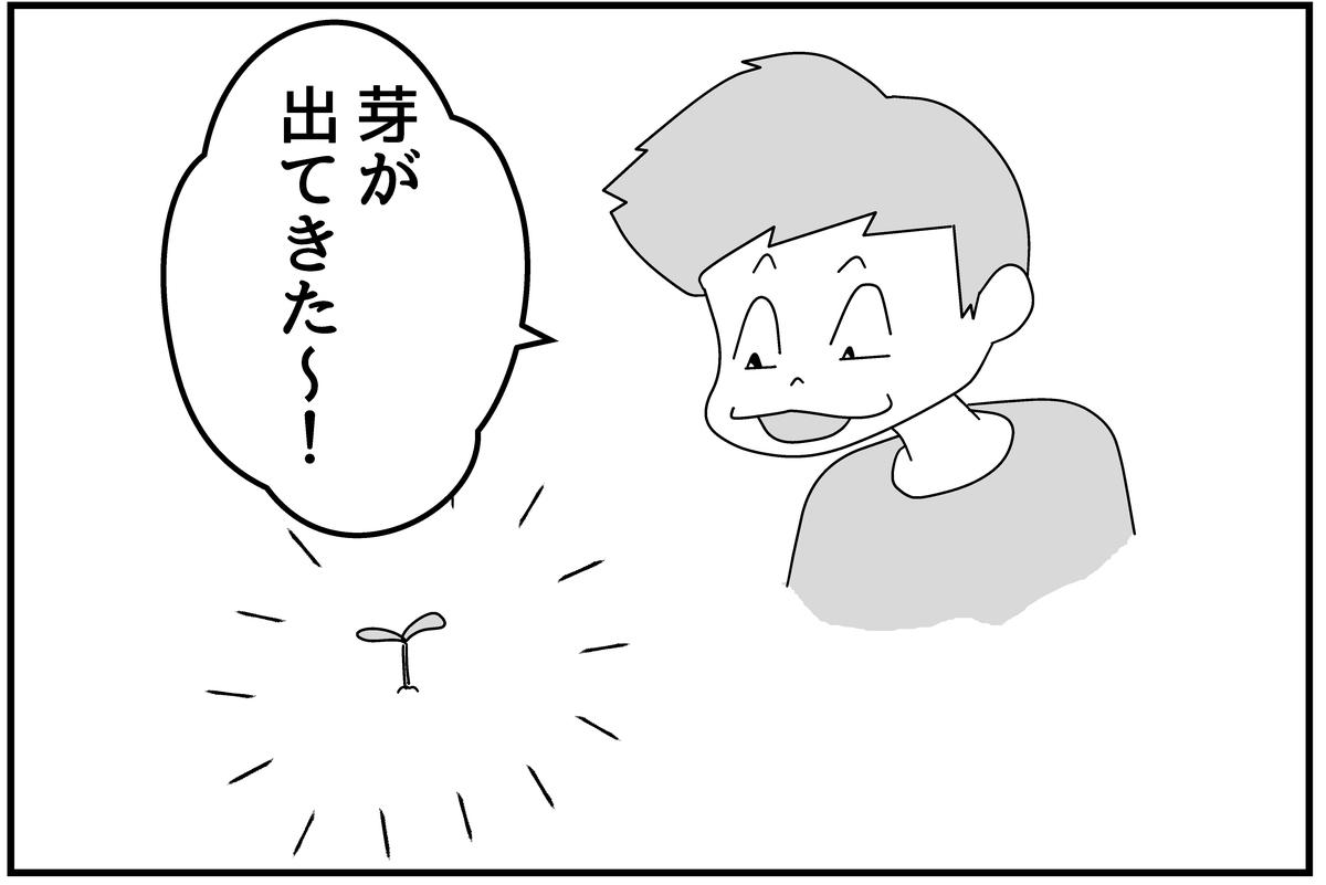 f:id:mu-neo:20210516163443j:plain