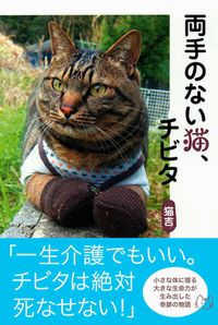 f:id:mu-otashitsuji:20170804014200j:plain