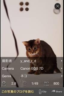 photo-stories5