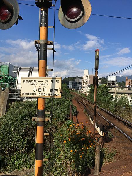 f:id:mugibatake40ro:20161103023613j:plain