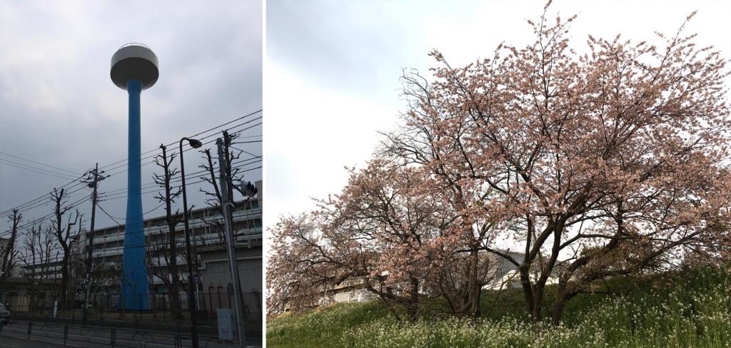 f:id:mugibatake40ro:20170321012709j:plain