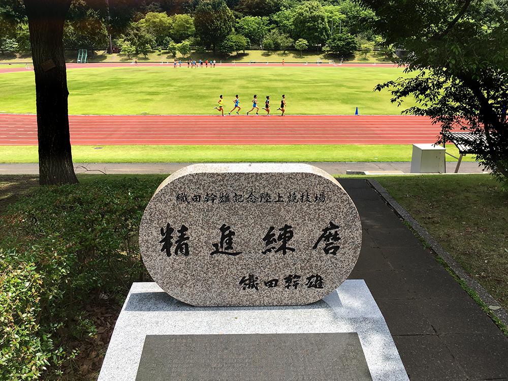 f:id:mugibatake40ro:20180610150308j:plain