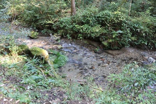 乙女滝への道中に清流