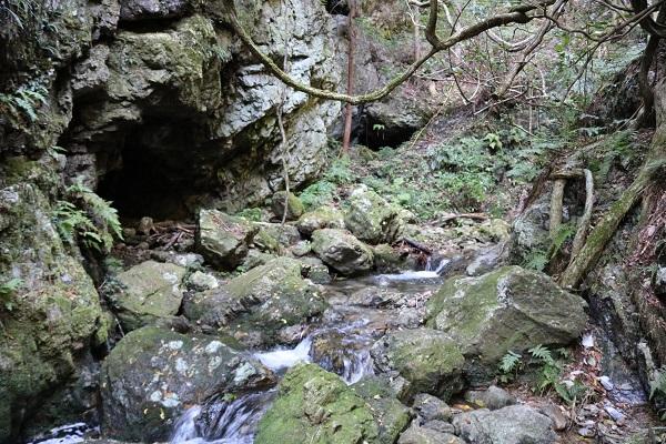 乙女滝への道なき道