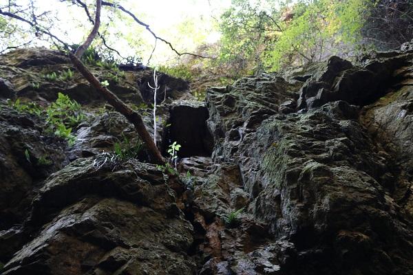 乙女滝の剥き出しの自然