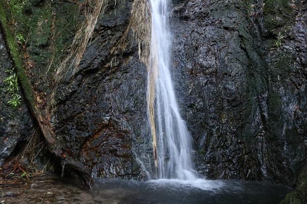 シャーと華麗に流れる権現滝