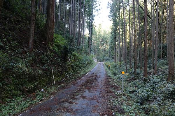 乳岩神社への細道