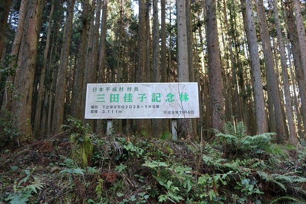 日本平成村村長の三田佳子記念林