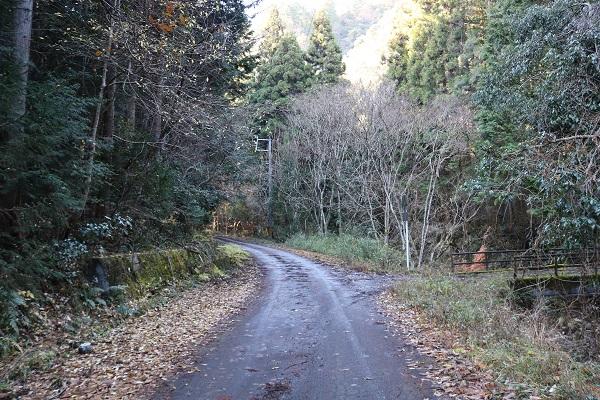 平成自然公園への道の分岐点