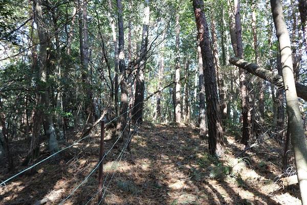 平成山遊歩道に整備された柵